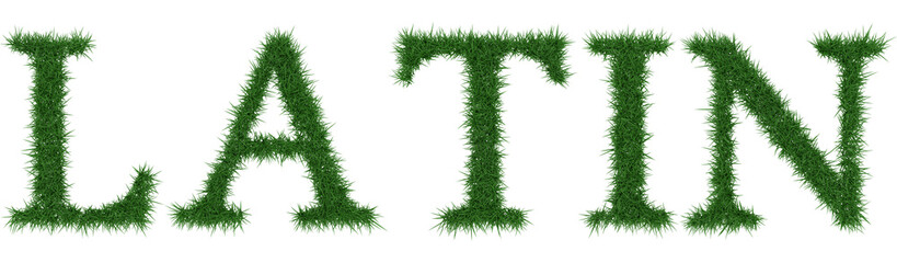 Latin - 3D rendering fresh Grass letters isolated on whhite background.