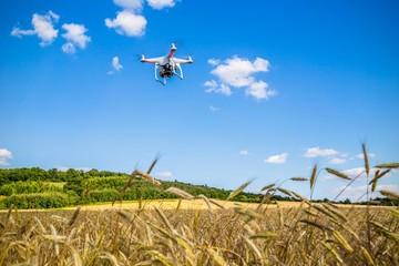 Dron w terenie, nad zbożem, nad wzgórzem