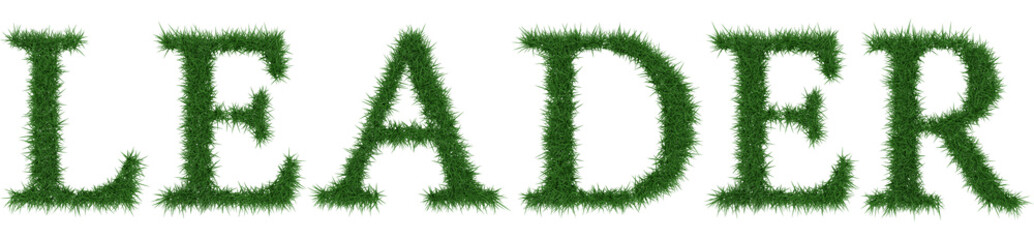 Leader - 3D rendering fresh Grass letters isolated on whhite background.