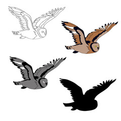 Vector illustration, an image of a flying owl. Black line, black and white and gray spots, black silhouette, color image.