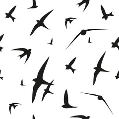Swallow, swift, birds. Graphic vector pattern. Decorative seamless background