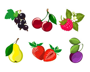 Set of ripe fruit and berries (cherries, pears, plums, strawberry, black currant, raspberry).Vector image.