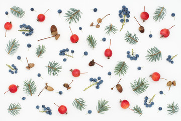 Colorful seasonal pattern of berries, paradise apples, acorns, spruce branches on white background