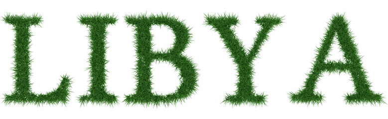Libya - 3D rendering fresh Grass letters isolated on whhite background.