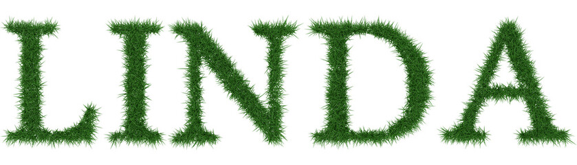 Linda - 3D rendering fresh Grass letters isolated on whhite background.