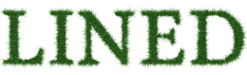 Lined - 3D rendering fresh Grass letters isolated on whhite background.
