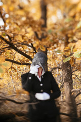 Weird and creepy woman in a rubber bird (penguin) mask standing in the autumn forest in a weird and creepy pose, wearing equestrian uniform