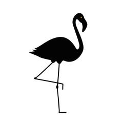 flamingo schwarz