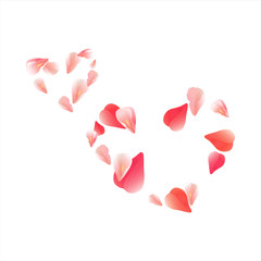 Pink Red flying petals isolated on white background. Sakura petals. Two Hearts of petals. Vector
