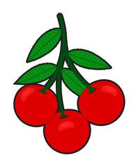 Red Cherries Branch Vector