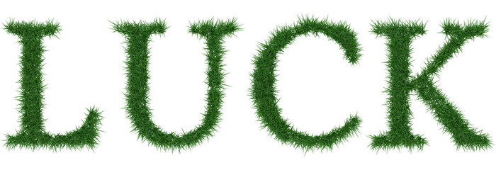 Luck - 3D rendering fresh Grass letters isolated on whhite background.