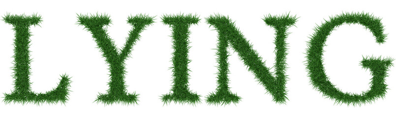 Lying - 3D rendering fresh Grass letters isolated on whhite background.