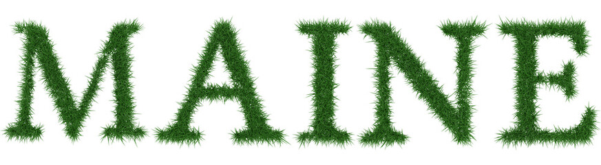 Maine - 3D rendering fresh Grass letters isolated on whhite background.