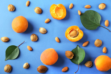 Composition with apricots and kernels on color background