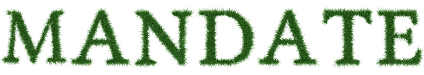 Mandate - 3D rendering fresh Grass letters isolated on whhite background.