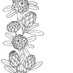 vector contour illustration of exotic flower bouquet frame