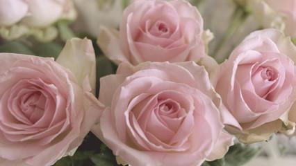 Rosenstrauß als Hintergrund