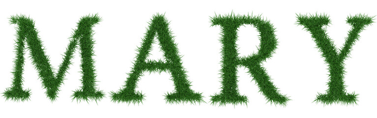 Mary - 3D rendering fresh Grass letters isolated on whhite background.