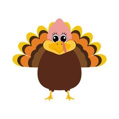 Turkey Pilgrimin on Thanksgiving Day