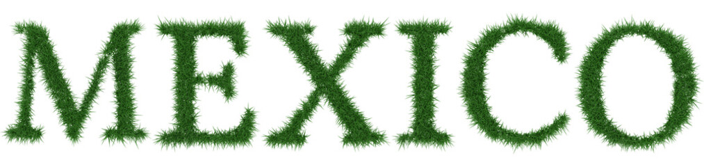 Mexico - 3D rendering fresh Grass letters isolated on whhite background.