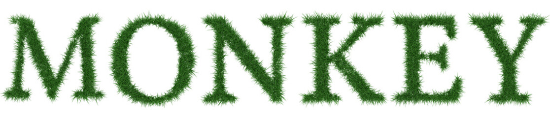 Monkey - 3D rendering fresh Grass letters isolated on whhite background.