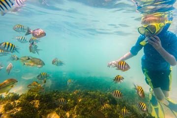 Boy snorkeling underwater on tropical reef