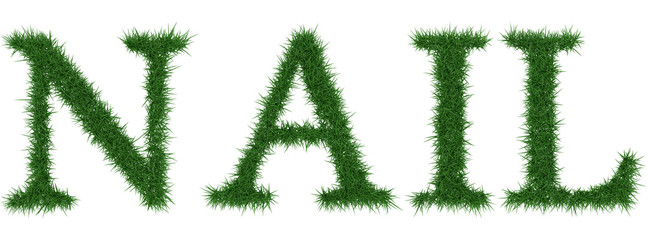 Nail - 3D rendering fresh Grass letters isolated on whhite background.