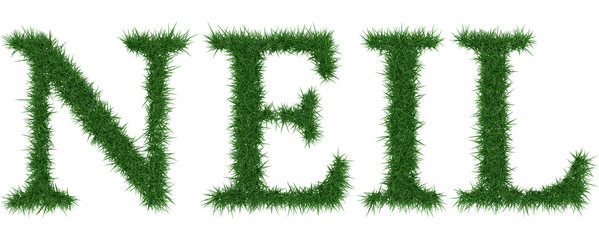 Neil - 3D rendering fresh Grass letters isolated on whhite background.