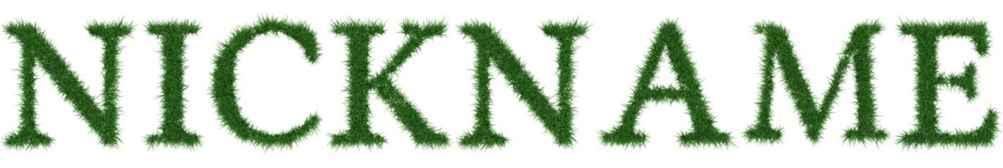 Nickname - 3D rendering fresh Grass letters isolated on whhite background.