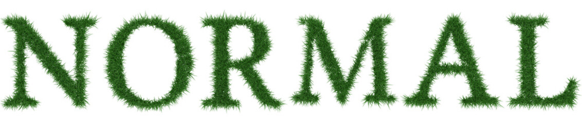 Normal - 3D rendering fresh Grass letters isolated on whhite background.