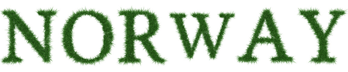 Norway - 3D rendering fresh Grass letters isolated on whhite background.