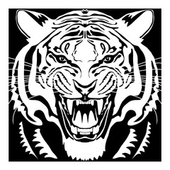 Angry tiger head; hand drawn vector graphic. Black and white square variant.