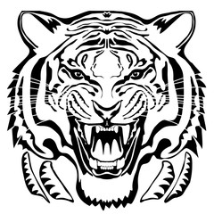 Angry tiger head; hand drawn vector graphic. Black drawing on isolated white background.