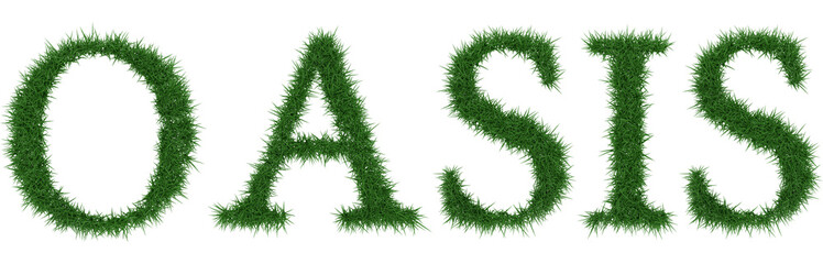 Oasis - 3D rendering fresh Grass letters isolated on whhite background.
