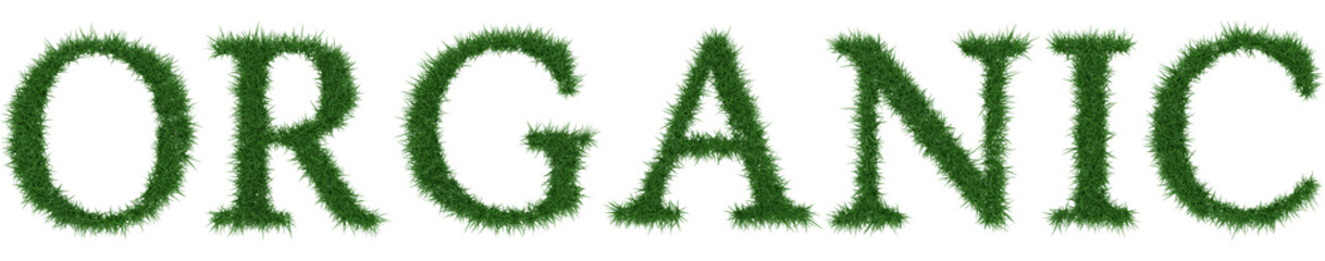 Organic - 3D rendering fresh Grass letters isolated on whhite background.