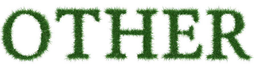 Other - 3D rendering fresh Grass letters isolated on whhite background.