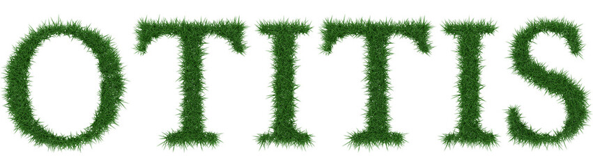 Otitis - 3D rendering fresh Grass letters isolated on whhite background.
