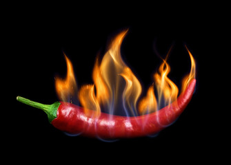 Canvas Prints Hot chili peppers Chili pepper in flame on a black background.