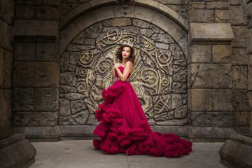 A beautiful woman, a queen in a red luxurious dress, stands on the background of a medieval, Gothic emblem with an arch, silver caron with crystals. The Princess at the Castle Wall mural