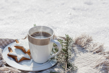 Cozy winter relax: a cup of hot coffee, a blanket and gingerbread overlooking the snowy countryside.