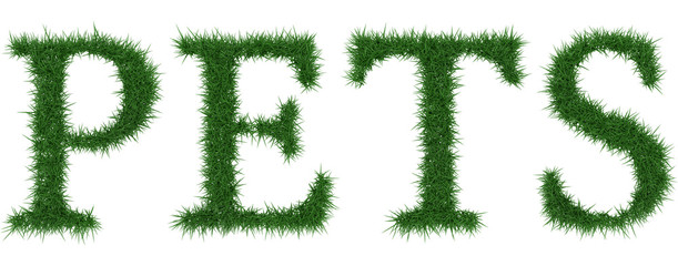Pets - 3D rendering fresh Grass letters isolated on whhite background.