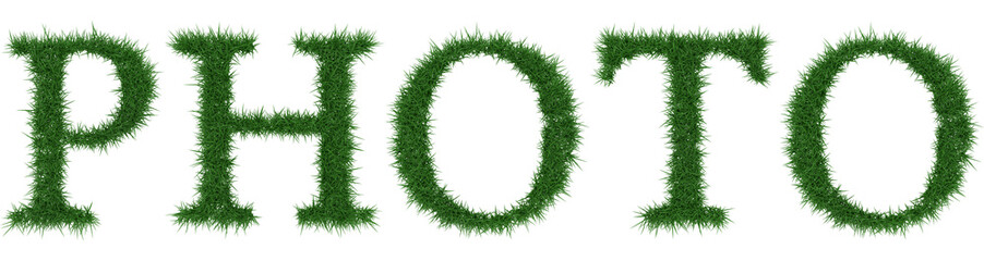 Photo - 3D rendering fresh Grass letters isolated on whhite background.