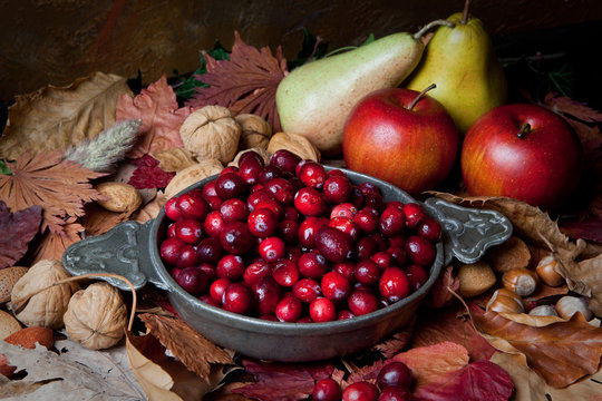 Autumn cranberries and nuts