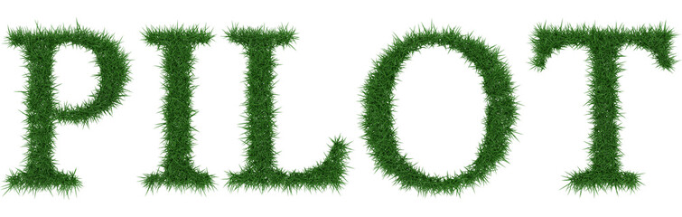 Pilot - 3D rendering fresh Grass letters isolated on whhite background.