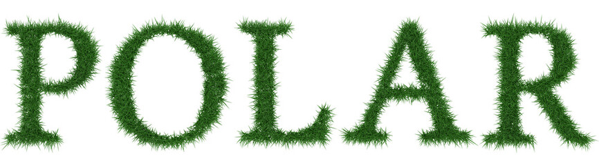 Polar - 3D rendering fresh Grass letters isolated on whhite background.