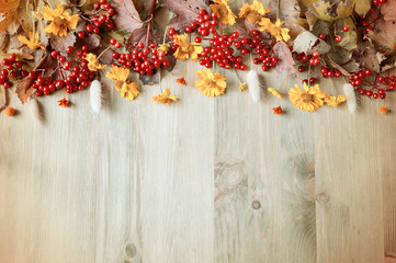 Autumn background with seasonal autumn Viburnum berries and flowers on the wooden background