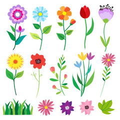 Big doodle set of flowers and leaves. Spring elements. Summer background. Vector illustration. Floral set