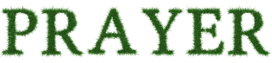 Prayer - 3D rendering fresh Grass letters isolated on whhite background.