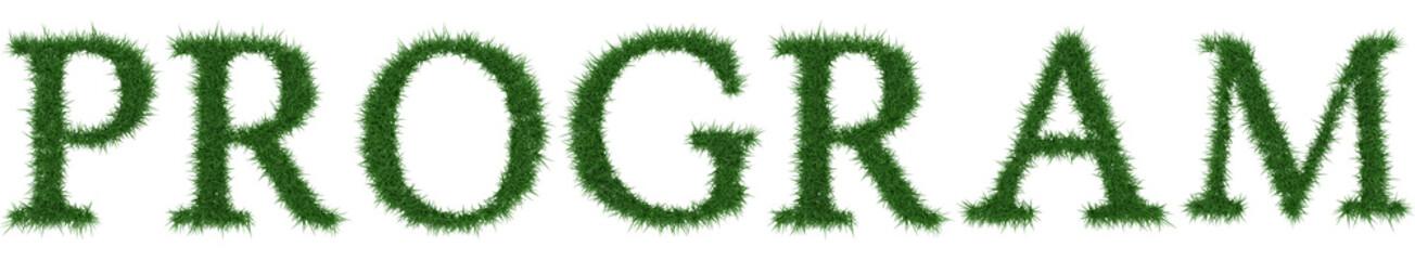Program - 3D rendering fresh Grass letters isolated on whhite background.
