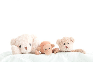 The gang of doll is happy feel , The teddy bear and the gang on green fabric that the doll happy with take a photo for good memory,Relation is best friends